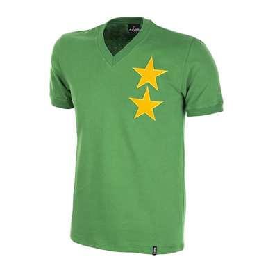 590   Cameroon 1970's Retro Football Shirt   1   COPA