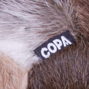 8004-3 | 3 | COPA