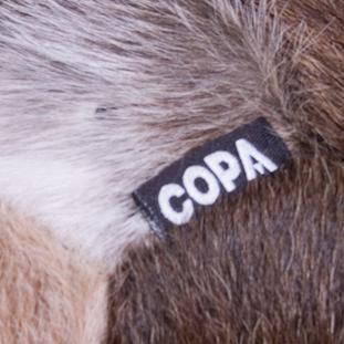 COPA Cow Football | 3 | COPA